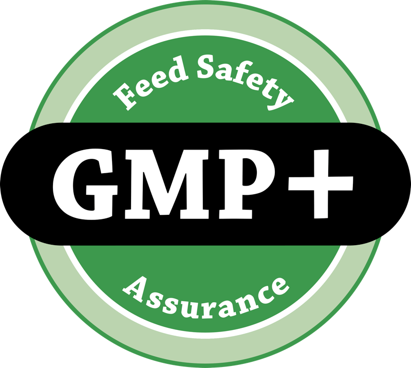 gmp-logo-png-transparent.png